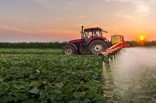 Потерять нельзя восстановить: обзор российского рынка биологических средств защиты растений